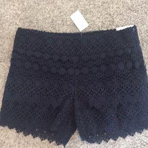 Ann Taylor loft navy crochet shorts size 00 nwt